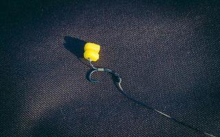 Ловля карпа на пружину: обзор снасти и её монтаж, прикормки и насадки