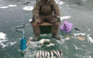 Рыбалка в декабре на открытой воде: снасти, прикормка и наживка