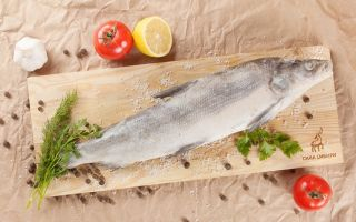 Рыба муксун: описание с фото, где водится, чем питается