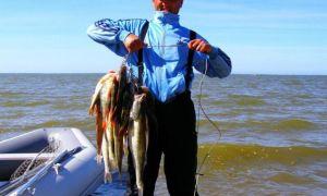 Рыбалка в калининградской области: платные и бесплатные места, прогноз клева
