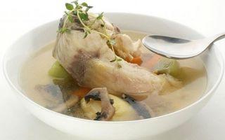 Уха из головы и хвоста семги, вкусные рецепты, польза и калорийность