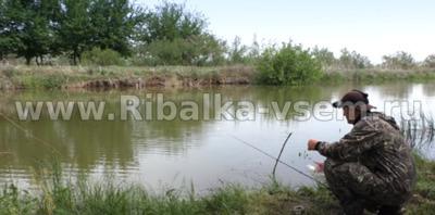 Ловля крупного карася: на поплавочную удочку, на фидер