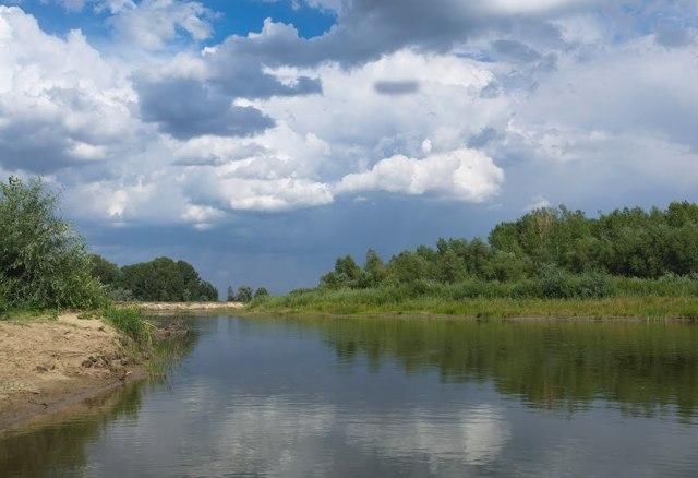 Рыбалка в Рубцовске и его окрестностях: места для рыбалки, прогноз клева