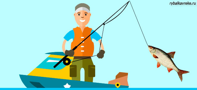 Плотва: описание рыбы, места обитания, образ жизни и способ ловли