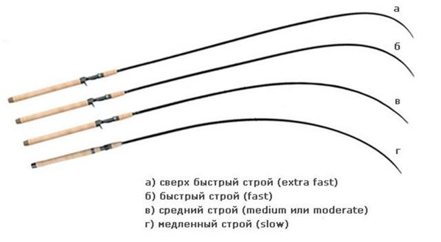 Как выбрать спиннинг на окуня: тест, строй, длина удилища