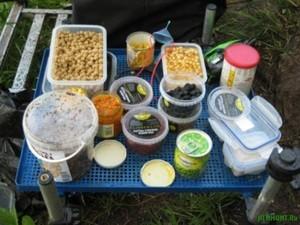 Прикормка для карпа и сазана своими руками, домашние рецепты