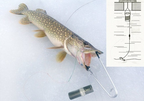 Поставушка на щуку своими руками: как сделать, рыбалка