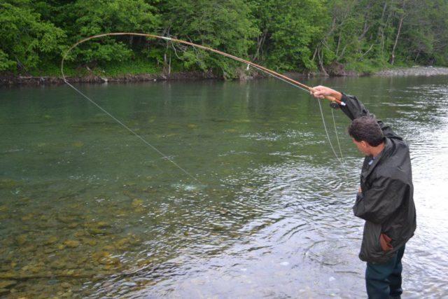 Как ловить форель: снасти, наживки, прикормки. Ловля летом, весной и осенью
