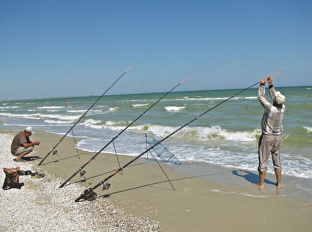 Ловля пеленгаса на Азовском море и Чёрном, снасти для ловли