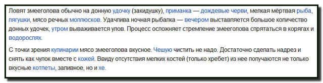 Ловля змееголова на лягушку в Казахстане и в Приморском крае, снасти