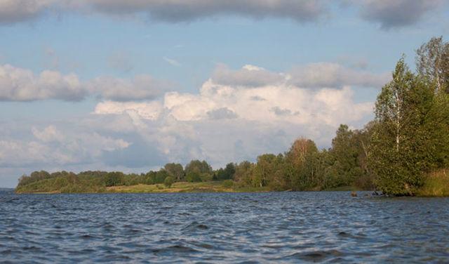Рыбалка на Яузском водохранилище: лучшие места, какую рыбу можно поймать