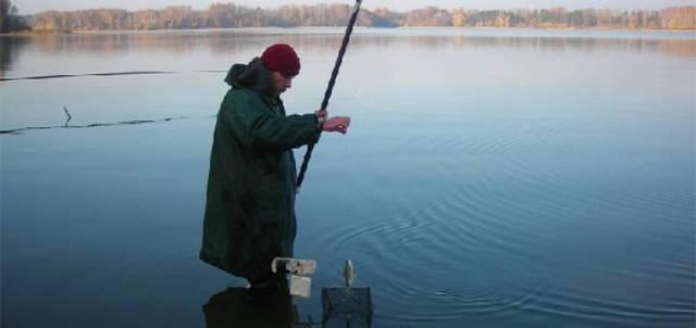 Ловля ерша на поплавочную удочку, обзор снаттей и наживок