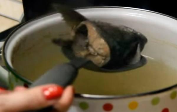 Уха из горбуши: 7 вкусных рецептов, варка ухи в домашних условиях