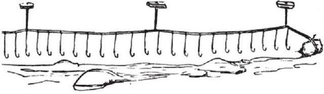 Снасти для ловли налима: зимой, летом, весной и осенью, способы ловли