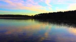 Нерест леща: когда лещ идет на нерест, температура воды