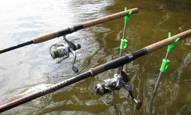 Как клюёт карп: поклёвка карпа на поплавочную удочку и донку (фидер)