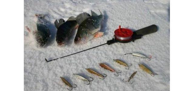 Снасти для зимней рыбалки: экипировка, зимняя удочка, приманки