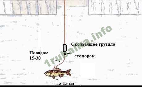 Как сделать жерлицу для рыбалки своими руками, фото и видео примеры