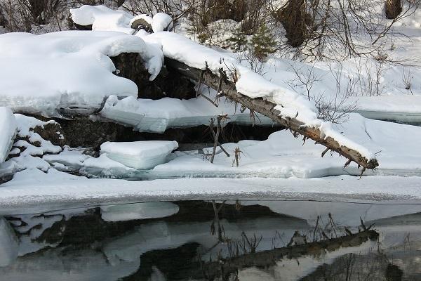 Ловля рыбы зимой на спиннинг, выбор месла ловли