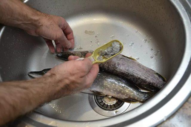 Как почистить форель: от чешуи, костей и кожи, советы по очистке