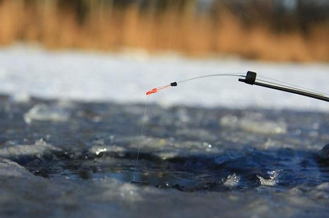 Ловля карася зимой со льда: снасти, наживки, карась на мормышку