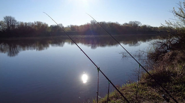 Какое давление для рыбалки лучше зимой: лучшая погода, направление ветра
