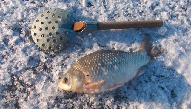 Прикормки для зимней рыбалки своими руками - лучшие рецепты