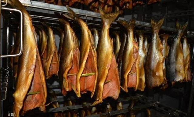 Как закоптить рыбу в домашних условиях, процесс холодного и горячего копчения