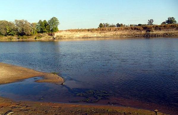 Ловля жереха на малых реках: выбор снастей и приманок