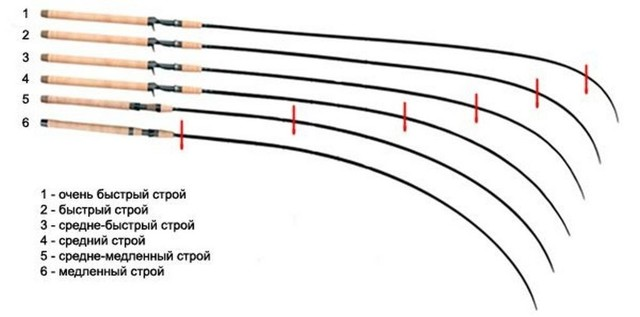 Что такое строй и тест спиннинга, правильный выбор спиннинга