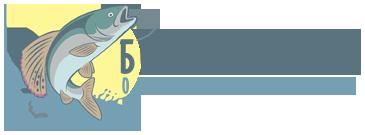 Чебак рыба (сибирская плотва): внешний вид, среда обитания