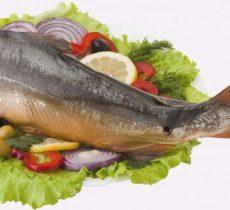 Горбуша польза и вред для организма, калорийность, состав, рецепты