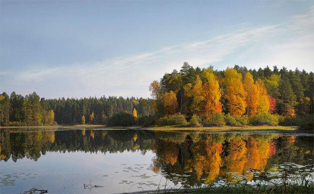Ловля щуки осенью на спиннинг: приманки, техника ловли (сентябрь, октябрь)