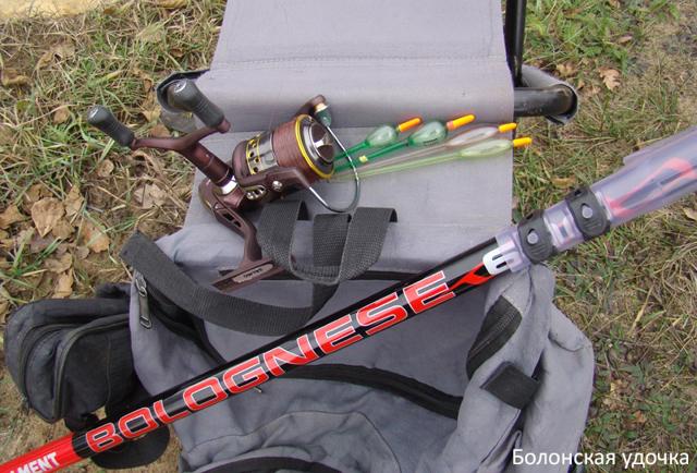 Оснастка болонской удочки для ловли на течении, техника ловли
