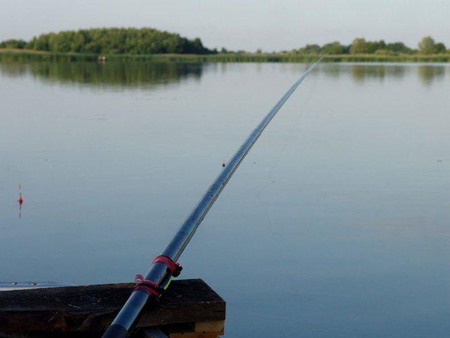 Ловля линя в июле: прикормка и насадки