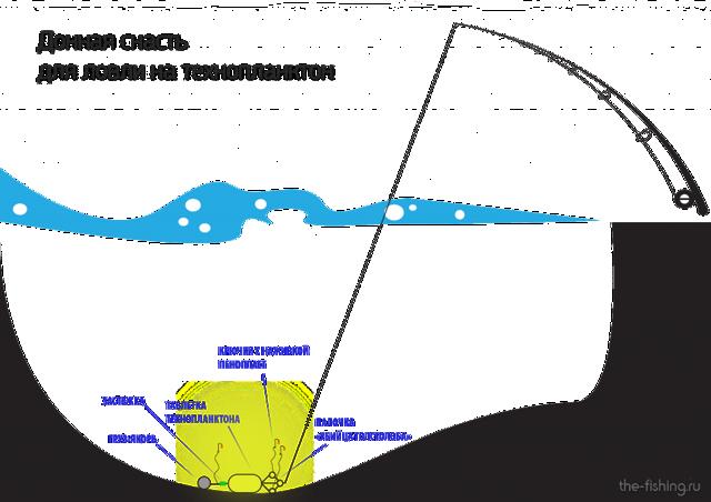 Технопланктон на толстолобика своими руками: ТОП 5 рецептов