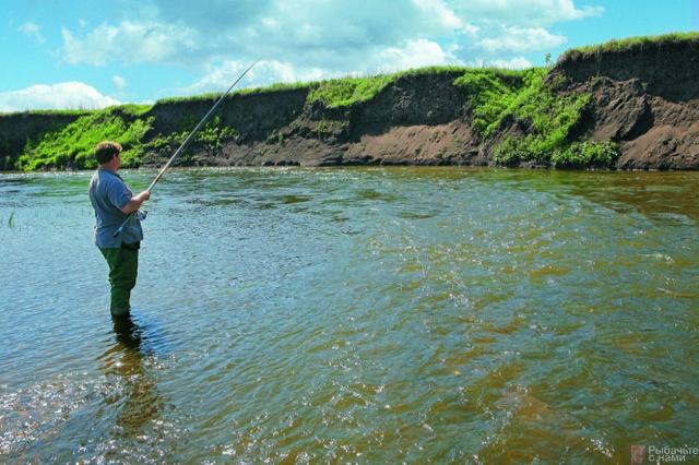Ловля пескаря на поплавочную удочку, как ловить пескаря