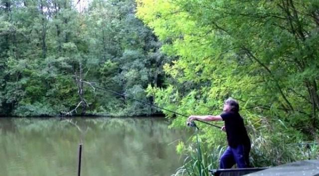 Ловля сазана: снасть на сазана, как ловить сазана, прикормка