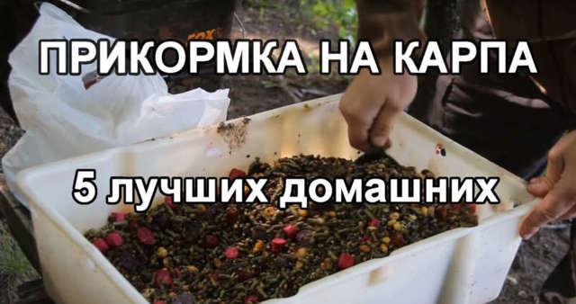 Прикормка для рыбы своими руками, лучшие рецепты в домашних условиях