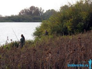 Ловля буффало: снасти, наживки и где ловить