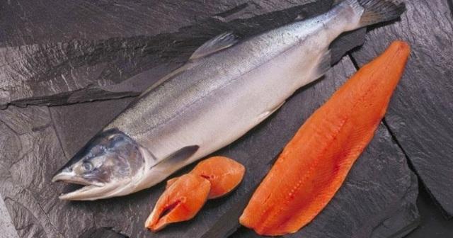Рыба чавыча: полезные свойства, где обитает, вкусные рецепты