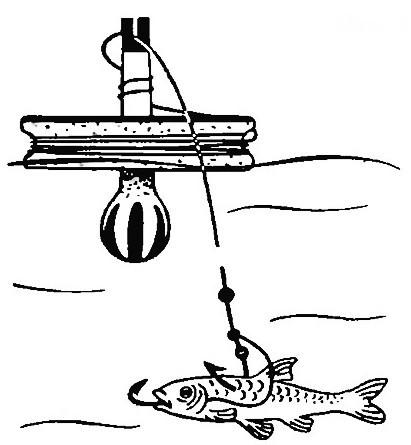 Ловля щуки на кружки: оснастка, кружки своими руками