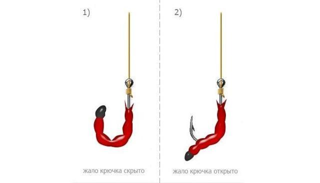 Как насаживать опарыша на крючок, где взять опарыша