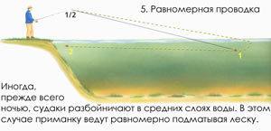 Способы проводки воблеров: 6 типов проводок, правильная техника