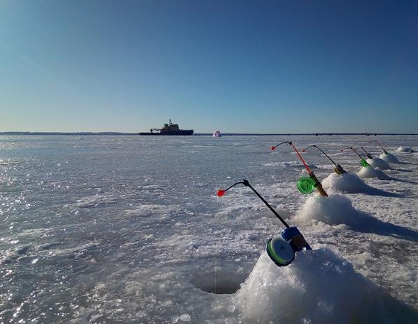 Ловля корюшки зимой: удочка, снасти, наживка и приманка