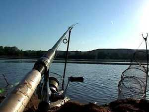 Ночная ловля рыбы на фидер, сом, голавль, налим и густера