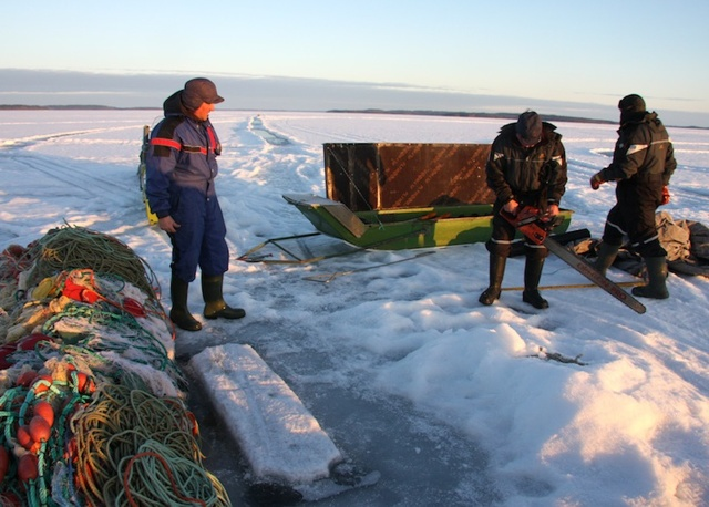 Зимняя рыбалка в Коми: обзор рыболовных баз, какие рыбы водятся
