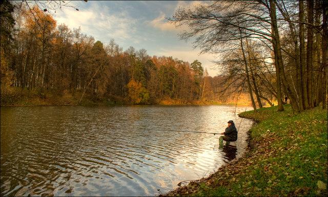 Ловля карпа осенью: в сентябре, октябрь, ноябрь. Обзор снастей и наживок.