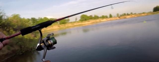 Ловля плотвы на поплавочную удочку, оснастка и техника ловли