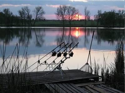 Белый амур на что ловить: летом, весной, осенью. Обзор лучших снастей.